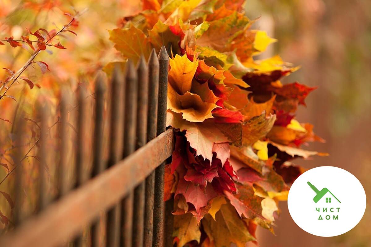 14 задачи за нашия дом през есента